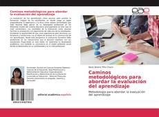 Bookcover of Caminos metodológicos para abordar la evaluación del aprendizaje