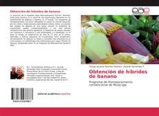 Obtención de híbridos de banano kitap kapağı
