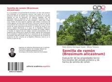 Bookcover of Semilla de ramón (Brosimum alicastrum)