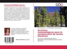 Bookcover of Acciones metodológicas para la comprensión de textos literarios