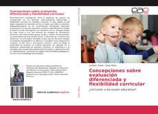 Bookcover of Concepciones sobre evaluación diferenciada y flexibilidad curricular