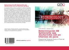 Portada del libro de Determinación DE Salmonella spp /Escherichia coli en Chorizos de pavo