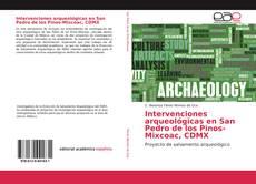 Buchcover von Intervenciones arqueológicas en San Pedro de los Pinos-Mixcoac, CDMX