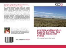 Analisis ambiental en Laguna Carmen, Isla Grande Tierra del Fuego的封面