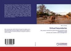 Virtual boundaries kitap kapağı