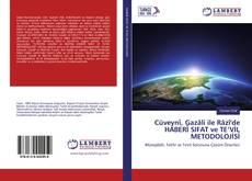 Cüveynî, Gazâli ile Râzî'de HABERÎ SIFAT ve TE'VİL METODOLOJİSİ kitap kapağı