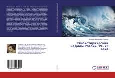 Buchcover von Этноисторический надлом России: 19 - 20 века