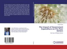 The Impact of Government Expenditure on Pro Poor Sectors的封面