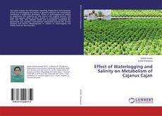 Capa do livro de Effect of Waterlogging and Salinity on Metabolism of Cajanus Cajan
