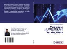 Portada del libro de Управление многоконтурным технологическим производством