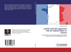 Bookcover of Laïcité and the apparent rise of radical Islam in France