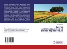 Bookcover of Синтез азагетероциклов на основе терпеноидов