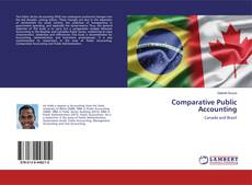 Bookcover of Comparative Public Accounting