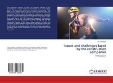 Copertina di Issues and challenges faced by the construction companies