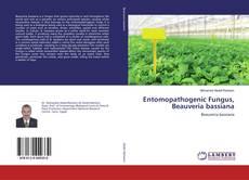 Bookcover of Entomopathogenic Fungus, Beauveria bassiana