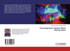 Bookcover of Praseodymium Doped Silver Borate Glass