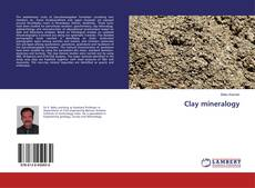 Bookcover of Clay mineralogy