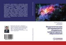 Обложка Педагогические детерминанты социально-гуманитарного образования