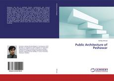 Обложка Public Architecture of Peshawar