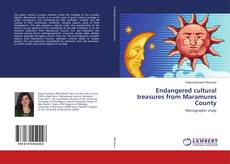 Bookcover of Endangered cultural treasures from Maramures County