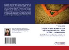 Bookcover of Effect of Bed Furrow and Trenching on In-Situ Rain Water Conservation