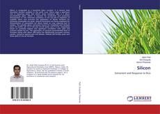 Bookcover of Silicon