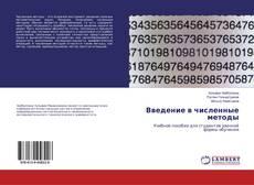 Buchcover von Введение в численные методы