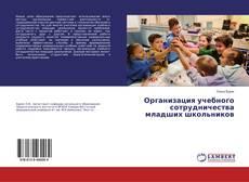 Организация учебного сотрудничества младших школьников kitap kapağı