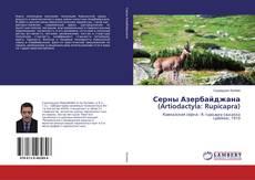 Bookcover of Серны Азербайджана (Artiodactyla: Rupicapra)