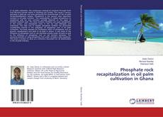 Copertina di Phosphate rock recapitalization in oil palm cultivation in Ghana