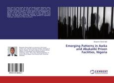 Couverture de Emerging Patterns in Awka and Abakaliki Prison Facilities, Nigeria