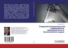 Гидрометаллургическая переработка минерального и техногенного сырья的封面
