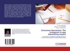 Bookcover of Consumer Awareness: The Instagram in-app Advertising Impact