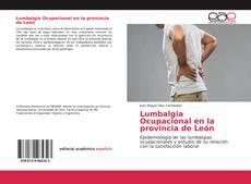 Bookcover of Lumbalgia Ocupacional en la provincia de León
