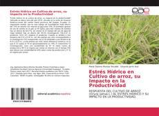 Estrés Hídrico en Cultivo de arroz, su Impacto en la Productividad的封面