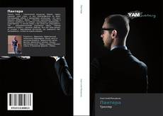 Bookcover of Пантера