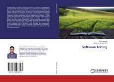 Borítókép a  Software Testing - hoz