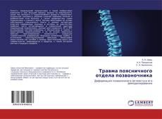 Травма поясничного отдела позвоночника kitap kapağı
