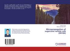 Micropropagation of sugarcane variety colk (94184) kitap kapağı