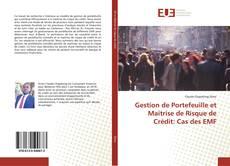 Gestion de Portefeuille et Maitrise de Risque de Crédit: Cas des EMF的封面