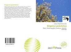 Bookcover of Erigeron pulchellus