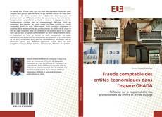 Bookcover of Fraude comptable des entités économiques dans l'espace OHADA