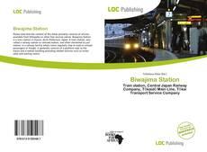 Bookcover of Biwajima Station