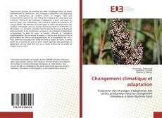 Buchcover von Changement climatique et adaptation