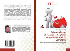 Bookcover of Prise en charge chirurgicale des plaies abdominales à l'HLD/ Cameroun