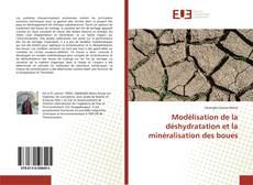 Modélisation de la déshydratation et la minéralisation des boues的封面