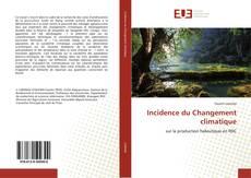 Buchcover von Incidence du Changement climatique