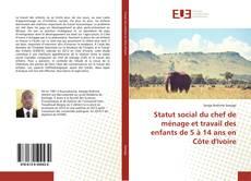 Bookcover of Statut social du chef de ménage et travail des enfants de 5 à 14 ans en Côte d'Ivoire