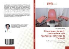 Hémorragies du post-partum dans trois hôpitaux de référence de Yaoundé的封面