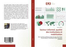 Secteur informel, qualité des institutions et mobilisation kitap kapağı